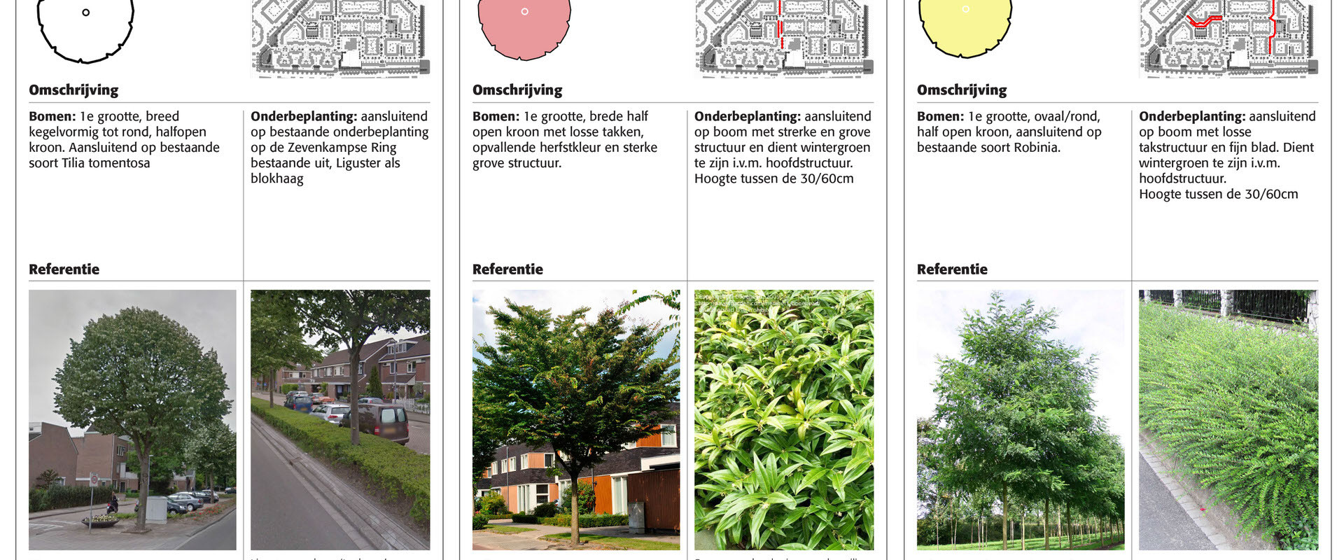 171030 Beplantingsvisie Rivierenbuurt-4