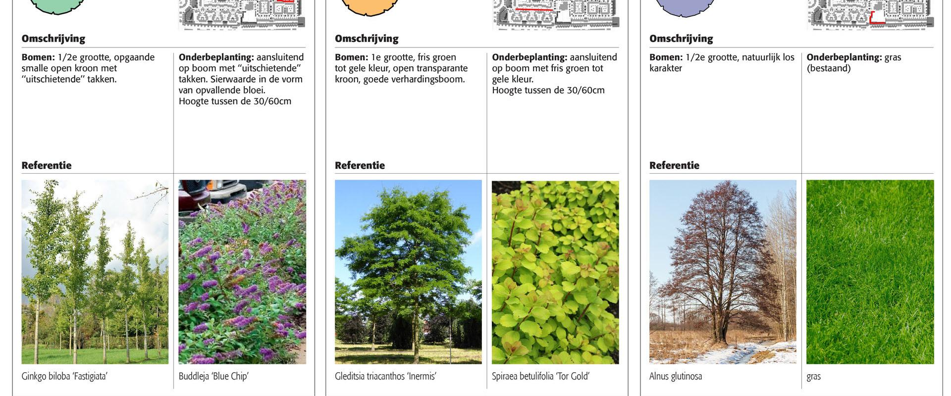 171030 Beplantingsvisie Rivierenbuurt-6